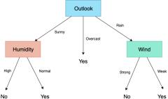 天气决策树示例