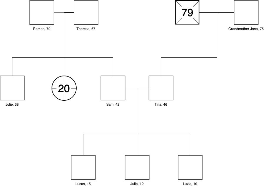 简单家族基因图