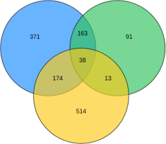 韦恩图-三个圆交集