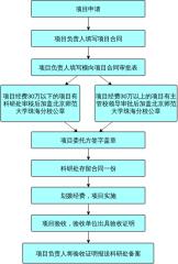 横向项目管理流程