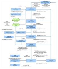 项目管理流程-活动和进度管理