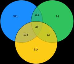 韦恩图(3circles)