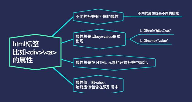html标签的属性